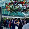 Wedding Rentals Rental Vendor For Weddings Galveston